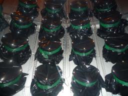 Installation des tubes photomultiplicateurs de l'expérience Double Chooz (01/06/2009)