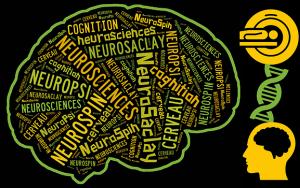 La Semaine du Cerveau du 17 au 20 mars 2015
