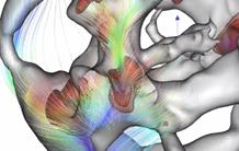 L'atlas de la toile cosmique des vitesses maintenant disponible