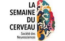 La Semaine du cerveau 2021 à NeuroSpin du 15 au 19 mars ... en webinaire