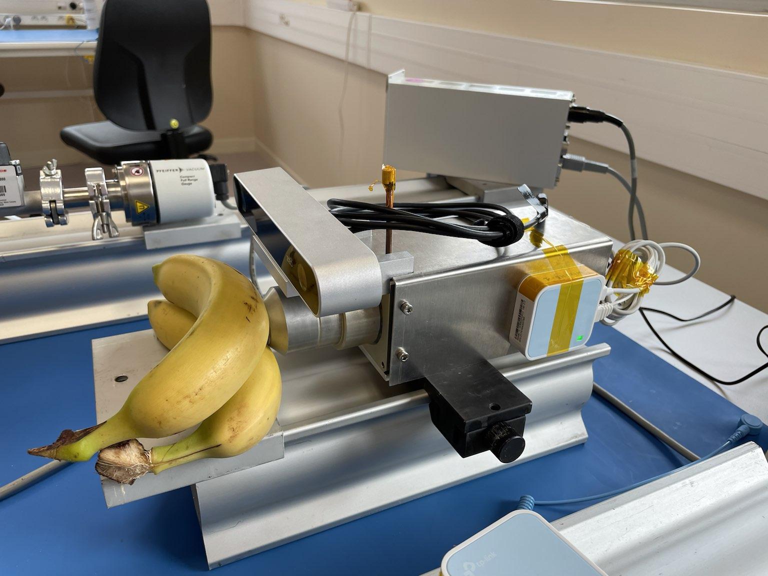 Le Lab'Com ALB3DO a la banane!