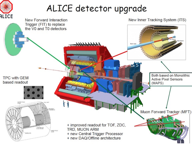 Des puces sur une échelle : fin de la production pour ALICE-MFT