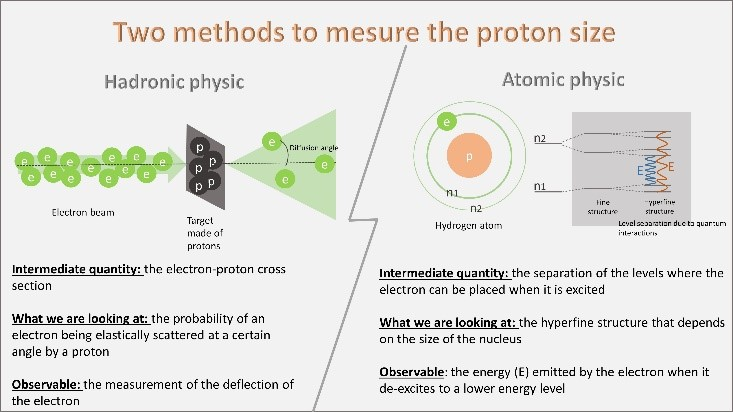 Which ruler to measure the size of the proton?