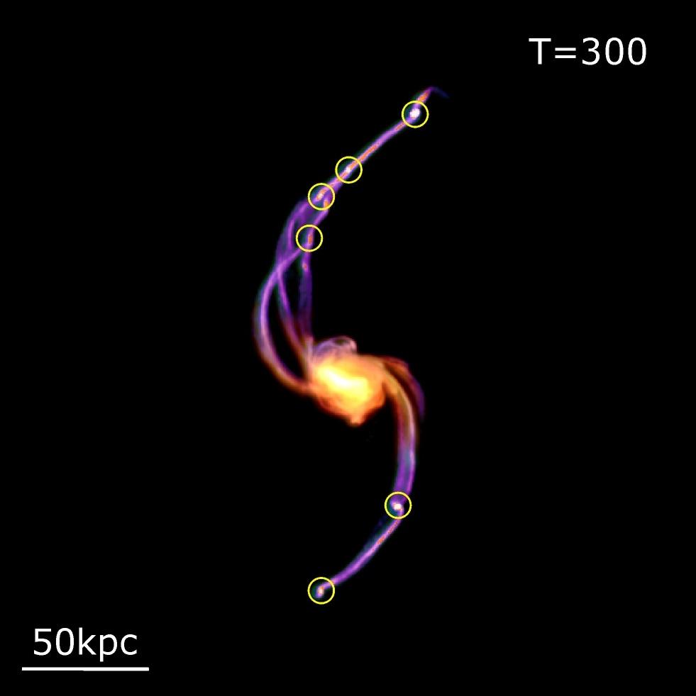D'où viennent les galaxies satellites ?