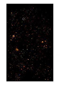 L'Univers profond sondé par le satellite XMM-Newton