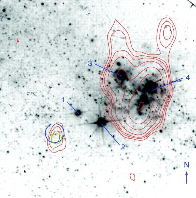 Une source-X ultra-lumineuse identifiée