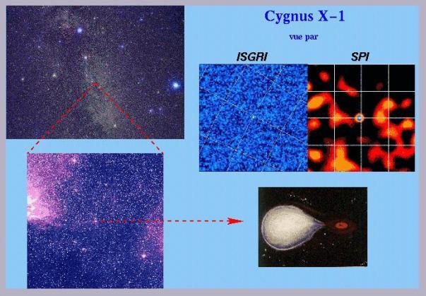 Cygnus X-1, première source astrophysique observée par INTEGRAL