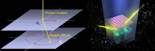 Lunettes gamma polarisantes