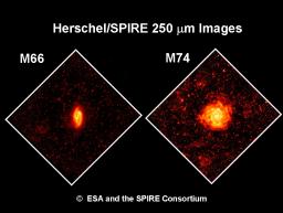 Herschel se prépare à une moisson de galaxies infrarouges