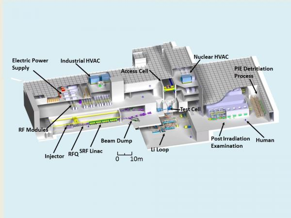 IFMIF (International Fusion Materials Irradiation Facility)