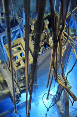 De la fission nucléaire à l'hypothèse d'un 4e neutrino : l'effet papillon !