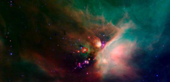 Les premiers pas d'une micro-étoile