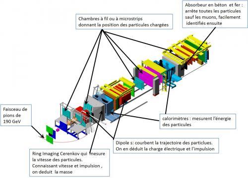 Une expérience du CERN affine une mesure essentielle pour décrire l'interaction forte