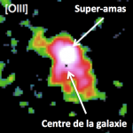 Discovery of an extremely young stellar clump in the distant Universe