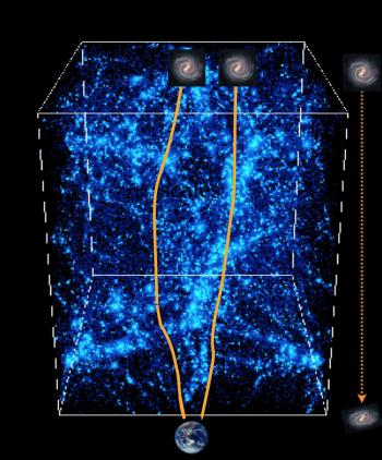 Decoding the Universe from gravitational distorsions