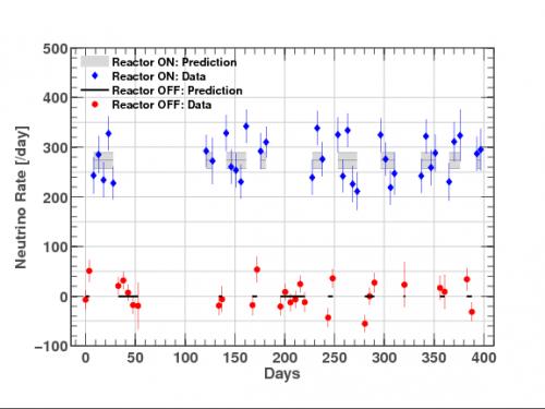 Premiers résultats de l'expérience Nucifer