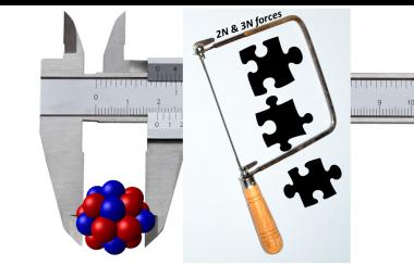 Rayons et masses des isotopes d'oxygène : un puzzle pour les forces nucléaires