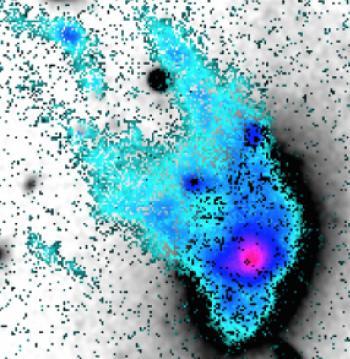 An enigmatic jellyfish elliptical  galaxy