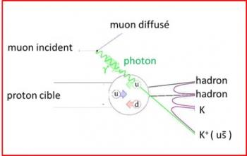 Etrangeté dans le nucléon : mesure des fonctions de fragmentation des quarks étranges à COMPASS