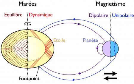 Le destin des exoplanètes en orbite proche