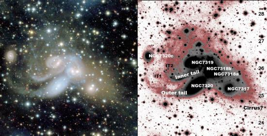 Cannibalism in a quintet of galaxies revealed by CEA MegaCam camera