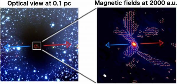 Le champ magnétique prépondérant pour la formation des étoiles