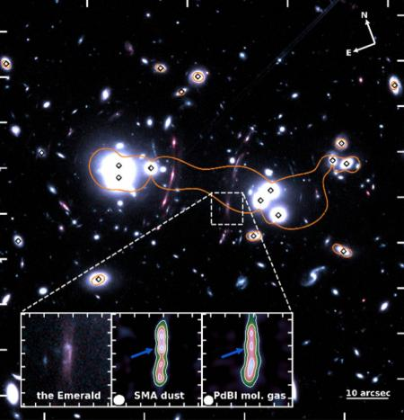 The Emerald : a jewell  to understand the evolution of early massive galaxies