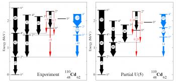 Confirmation du caractère vibrationnel du cadmium-110