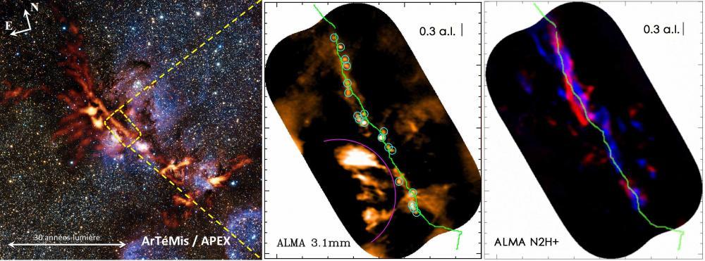 Nouveaux indices sur l'origine de la masse des étoiles