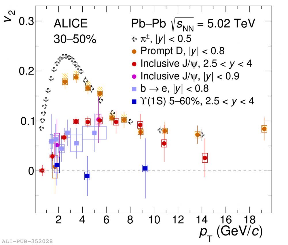 La collaboration ALICE du CERN reporte ses nouveaux résultats sur un charmant messager du plasma de quarks et de gluons