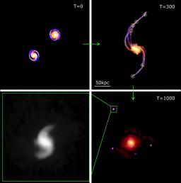 L'origine diverse des galaxies naines révélée par les simulations numériques