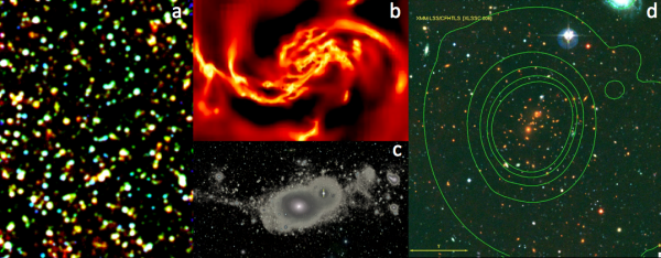 Cosmology and Galaxy Evolution group (LCEG)